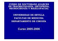 Curso 2005-2006