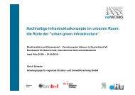 Nachhaltige Infrastrukturkonzepte im urbanen Raum: die Rolle der ...