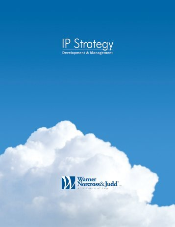 IP Strategy