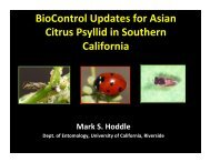 BioControl Updates for Asian Citrus Psyllid in Southern ... - San Diego
