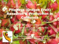 Research & Production in California