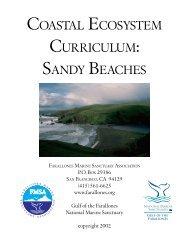 COASTAL ECOSYSTEM CURRICULUM SANDY BEACHES