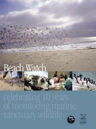 Beach Watch celebrating 10 years of monitoring marine sanctuary wildlife