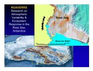 ROAVERRS Research on Atmospheric Variability ... - Penguinscience
