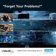 HORA Power Technology Service - BVALVE
