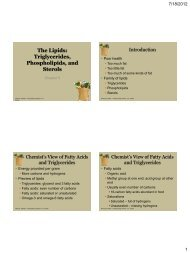Phospholipids and Sterols