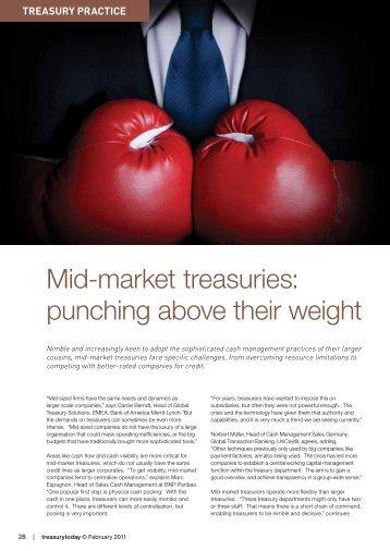 Treasury Practice