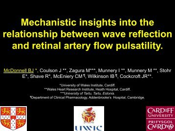and retinal artery flow pulsatility
