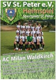 SVS-Heimspiel 2015/16-01
