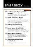 Fronda60 - RemediuM - Page 4