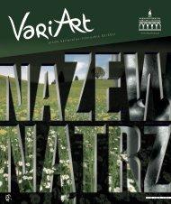 3/2011 - plik pdf - Wojewódzka Biblioteka Publiczna