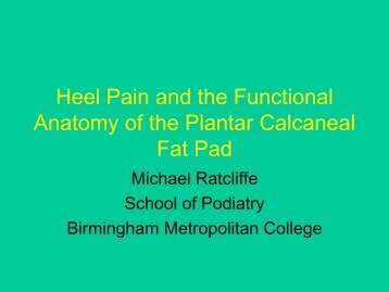 Heel Pain and the Functional Anatomy of the Plantar Calcaneal Fat Pad
