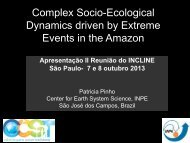 Dynamics driven by Extreme Events in the Amazon