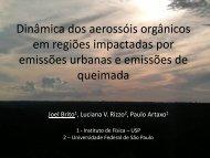 em regiões impactadas por emissões urbanas e emissões de queimada