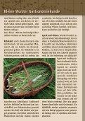 und Fleischrestaurant in Dorum-City – Auszeichnung 2007 - Wurster - Seite 7