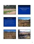 Fauquier County Wetland & Stream Restoration - Page 6