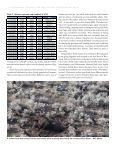 Elk/Bison - Page 4
