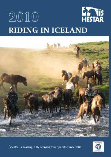 riding, whale watching, blue lagoon, gullfoss - geysir - Íshestar