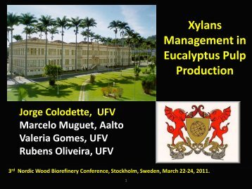 Xylans Management in Eucalyptus Pulp Production