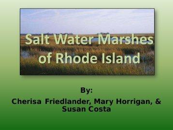 Salt Water Marshes of Rhode Island
