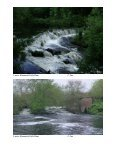 THE SAUL B SAILA FELLOWSHIP - Wood-Pawcatuck Watershed ... - Page 3