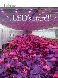 LED's start!!!