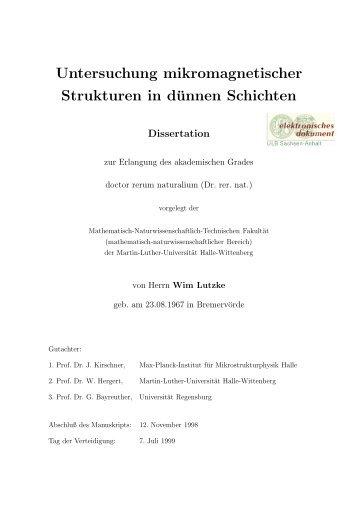Untersuchung mikromagnetischer Strukturen in dünnen Schichten