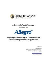Allegro-New-Age-of-D.. - Allegro Development Corporation