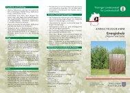 Anbautelegramm - Energieholz (Populus und Salix) - TLL