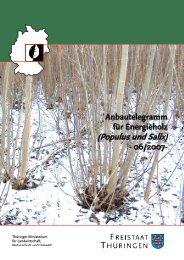 Anbautelegramm für Energieholz (Populus und Salix) - TLL