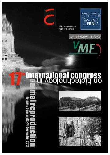 anim 17th international congress