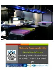 Molecular Screening Facility