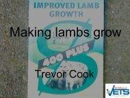 Making lambs grow