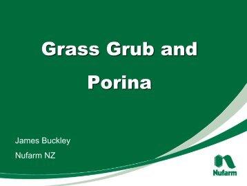 Grass Grub and Porina