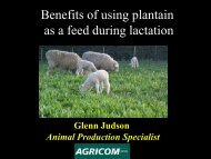 Benefits of using plantain as a feed during lactation