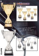 ALL TROPHIES: Cups and Bowls - Page 7