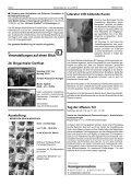 Herzlich willkommen zum 28. Brigachtaler Dorffest vom 21. - Seite 6