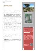 Tesouros de Ribeira de Pena - Page 7