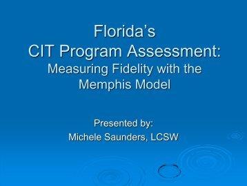 CIT Program Assessment
