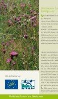 Wetterauer Lamm- & Landgenuss - Wetterauer Hutungen - Seite 2