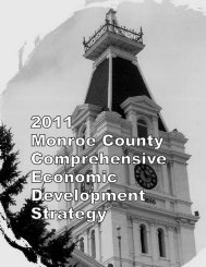 2011 Monroe County Comprehensive Economic Development Strategy