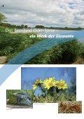 Storkow (Mark) - Tourismusverband Seenland Oder-Spree e.V. - Seite 6