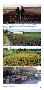 021-523 60, Fax - Eriksbo Plantskola AB - Page 4
