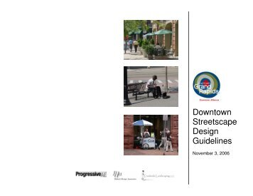 Downtown Streetscape Design Guidelines - City of Grand Rapids