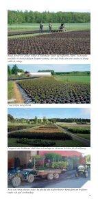 ladda ner - Eriksbo Plantskola AB - Page 4