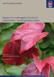 Rapport om undersøgelse af risiko for arbejdsskader i handicaphjælper-jobbet