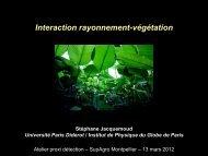 Interaction rayonnement-végétation