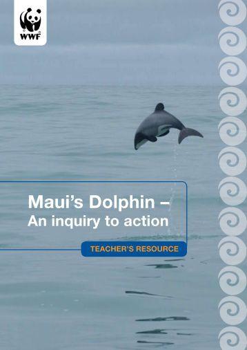 Maui's Dolphin –