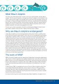 Maui's Dolphin – - Page 5