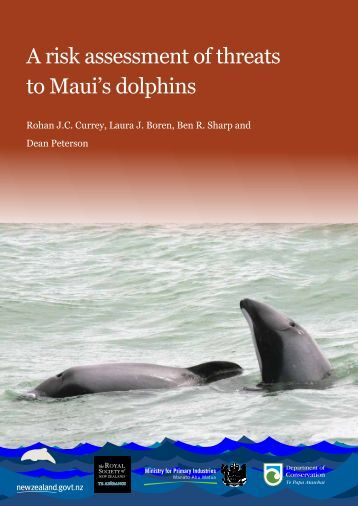A risk assessment of threats to Maui's dolphins - Department of ...